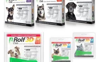 개와 고양이 벼룩에서 Rolf Club 3D 삭제