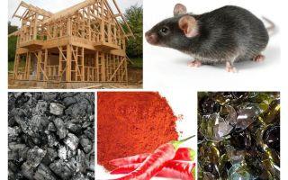 생쥐에 대한 프레임 하우스의 보호