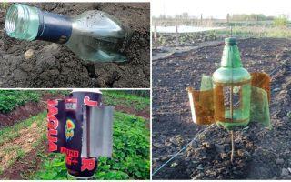 dacha 또는 정원에서 두더지를 제거하는 방법