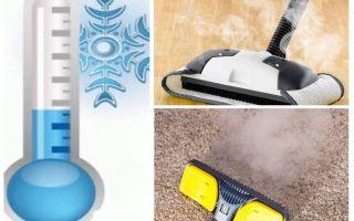 카펫 벼룩 살충제와 즉석에서 제거하는 방법을 제거하는 방법