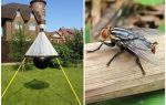 gadflies 및 gadflies에 대한 홈 메이드 트랩