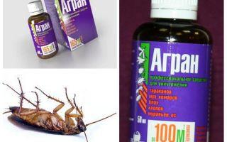 바퀴벌레에 대한 Agran 구제