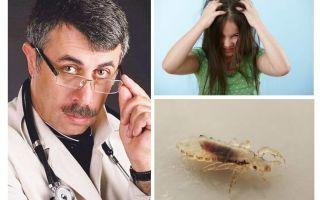 Dr. Komarovsky가 말라리아 예방 접종에 대한 조언