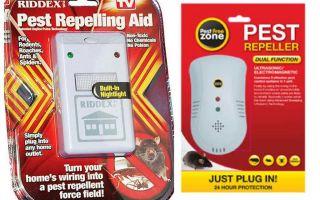 바퀴벌레의 Pest Repeller에 대한 설명 및 리뷰