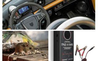 자동차 리셀러 쥐 및 마우스