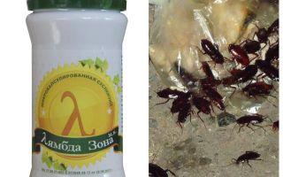 바퀴벌레에 대한 람다 프로브 구제 수단