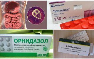 성인의 Giardia 치료를위한 최고의 약