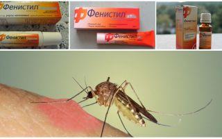 모기에 물린 젤 페니실린 : 지침, 리뷰 및 아날로그