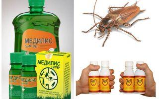 바퀴벌레를 집에서 독살하는 방법과 목적