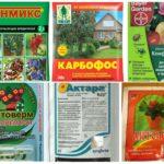 진딧물의 효과적인 독성 화학 물질