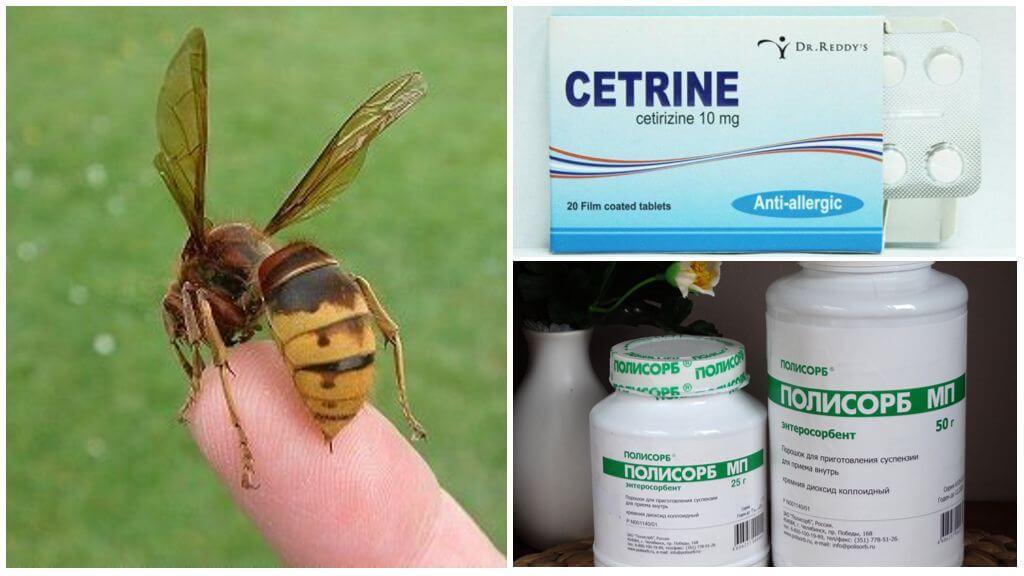 알레르기 약