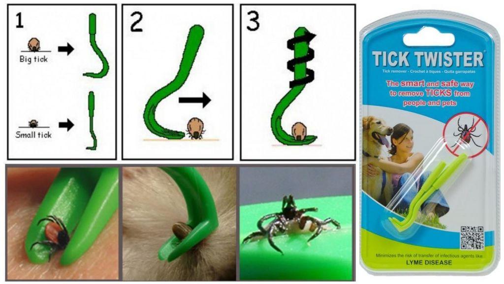 Tick Twister Tick 엑스트라
